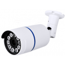 1080P Resolution, 4-in-1 (AHD, HD-TVI, HD-CVI, and Analog) Varifocal Super IR Bullet Camera (White Color)